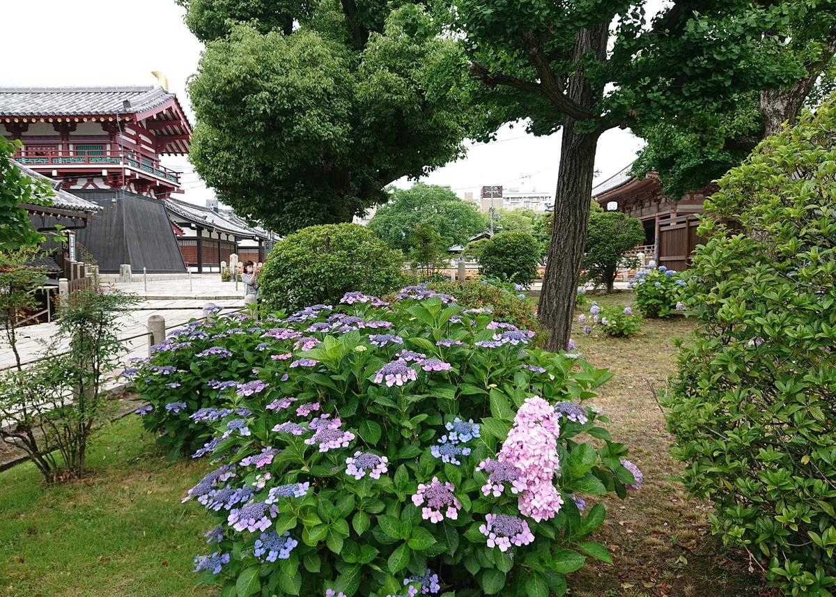 f:id:Kaimotu_Hatuji:20200613180313j:plain