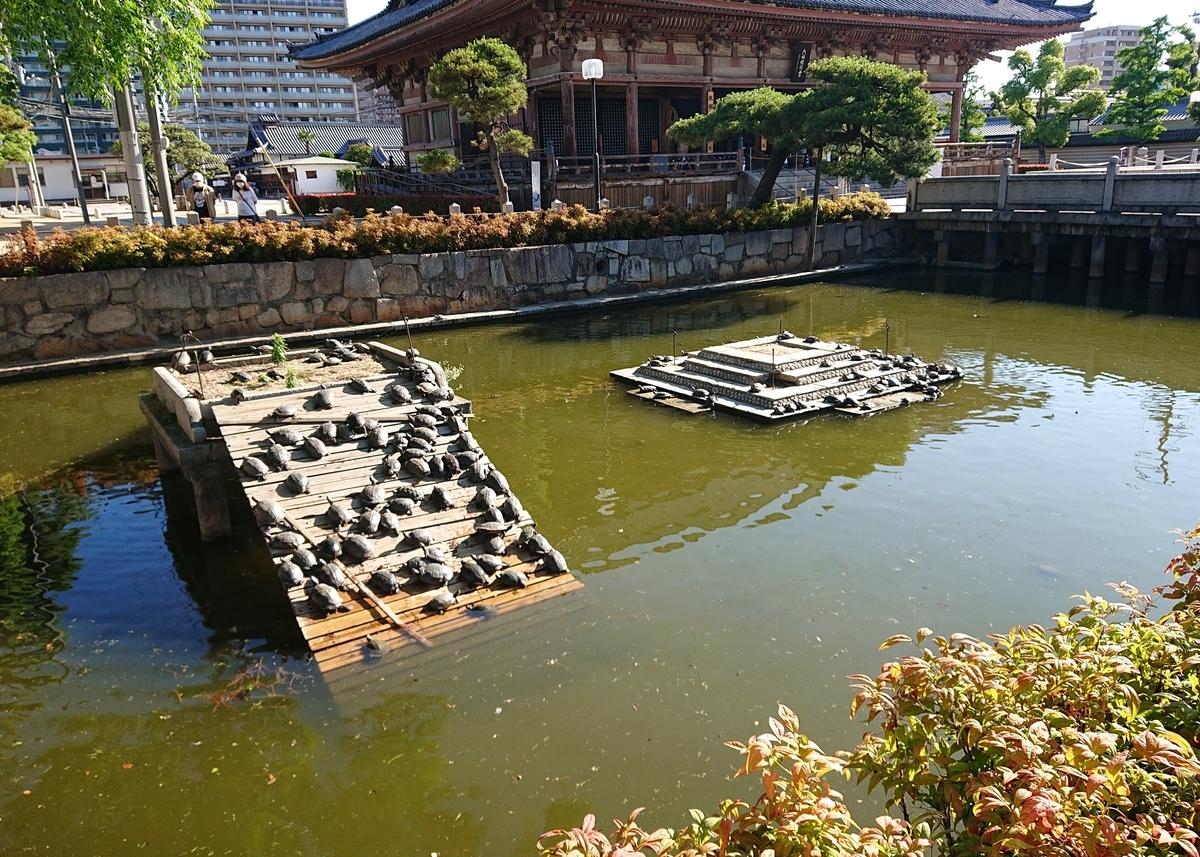 f:id:Kaimotu_Hatuji:20200616052339j:plain