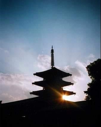 f:id:Kaimotu_Hatuji:20200618085752j:plain