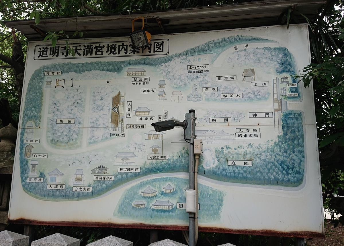 f:id:Kaimotu_Hatuji:20200620195645j:plain