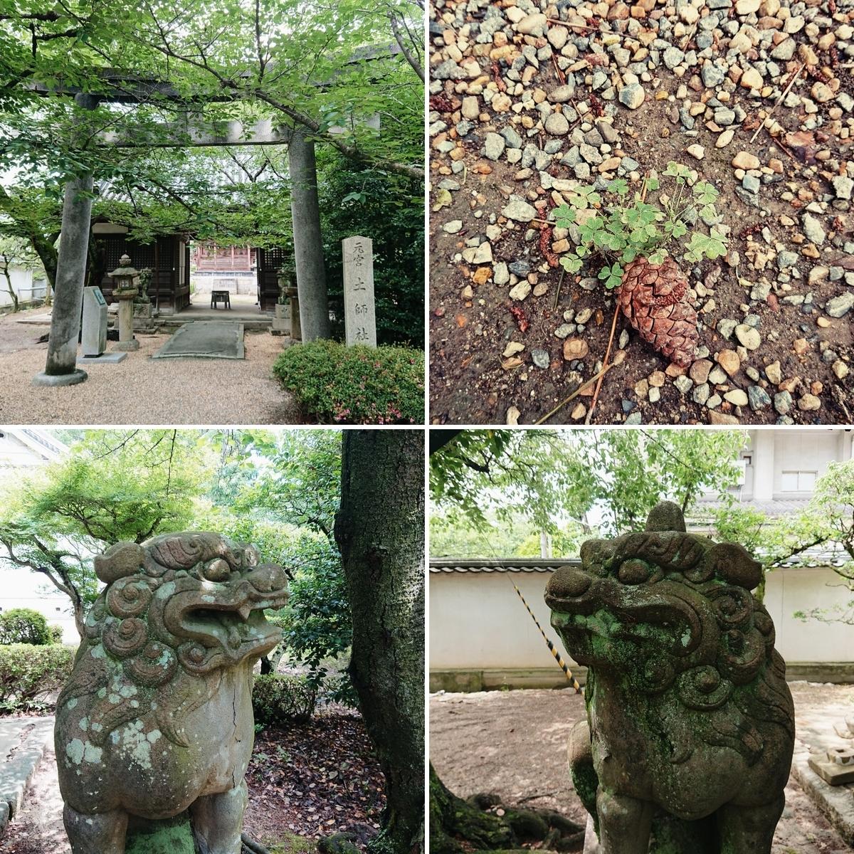 f:id:Kaimotu_Hatuji:20200622175648j:plain
