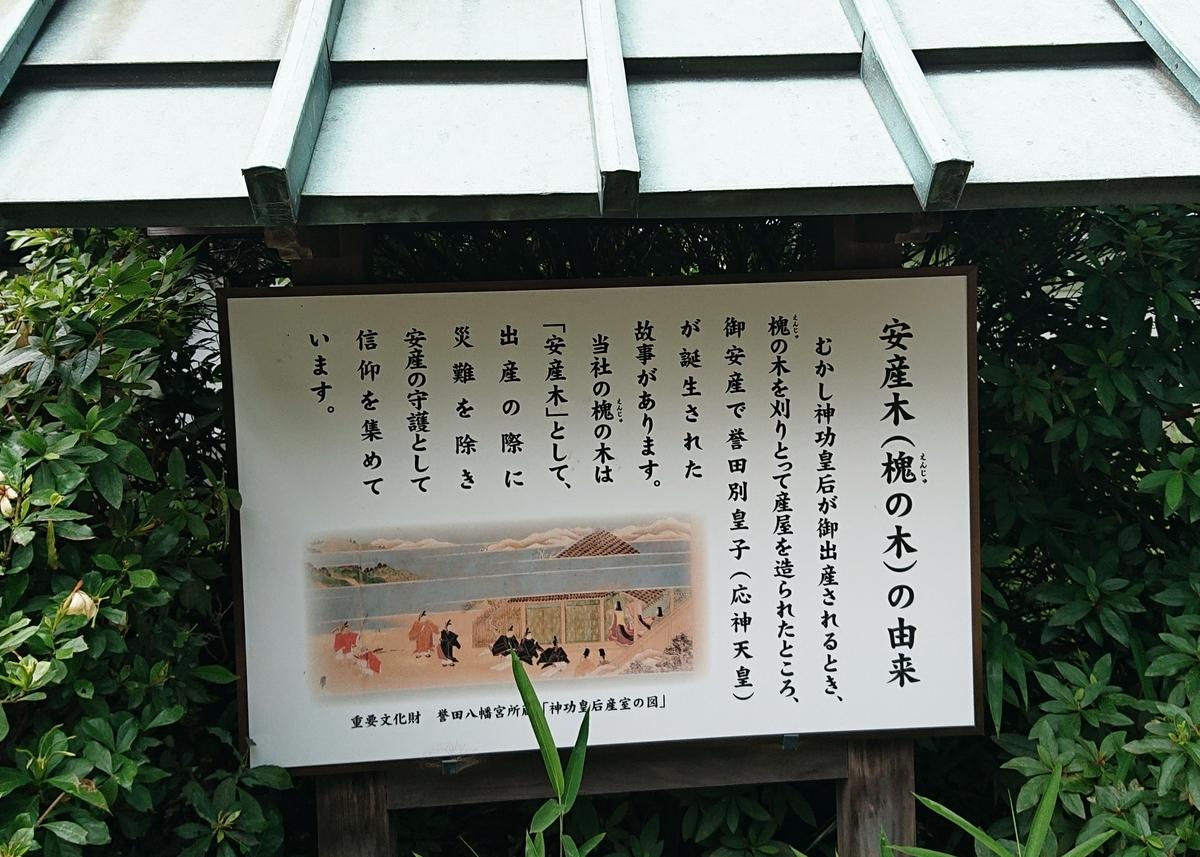f:id:Kaimotu_Hatuji:20200626093603j:plain