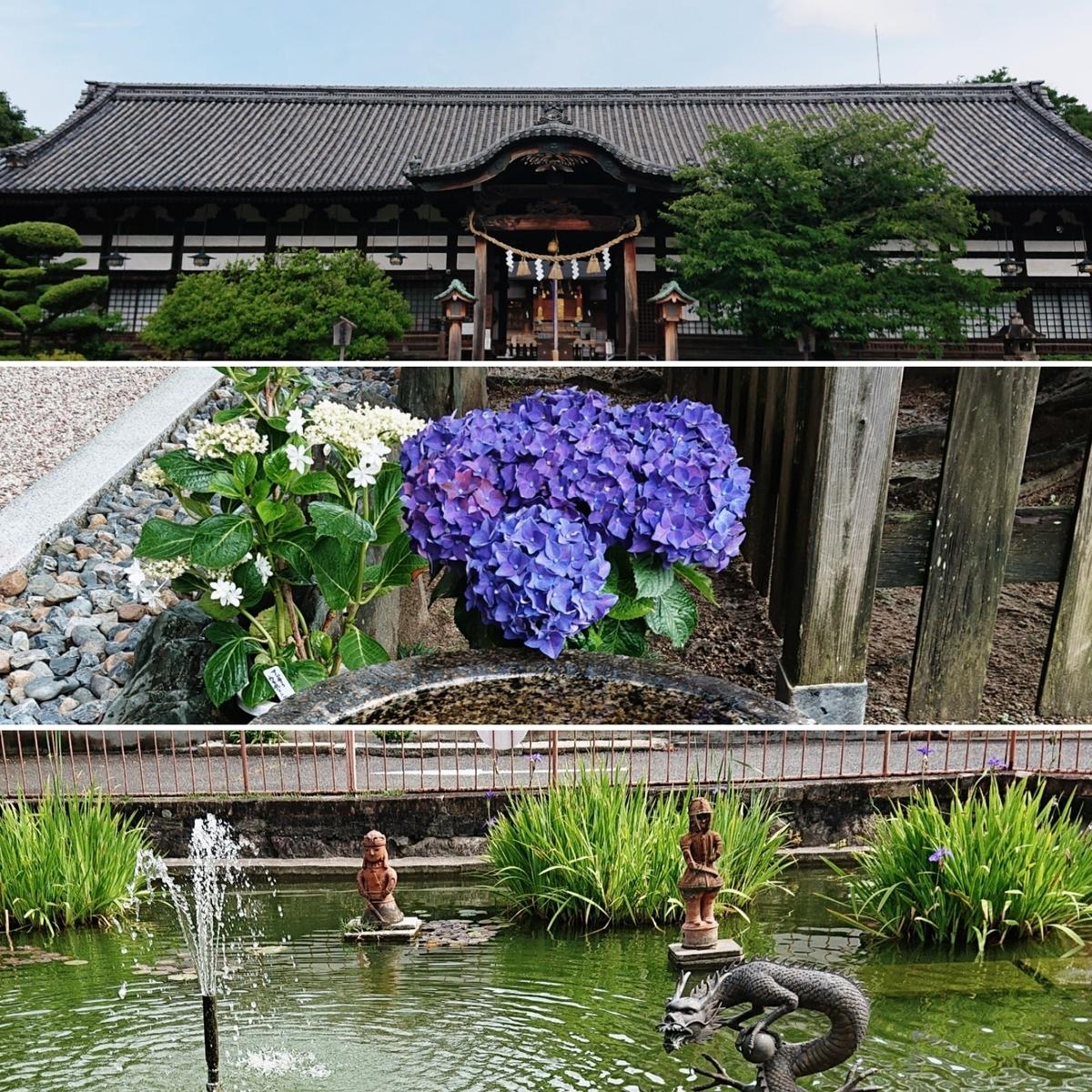 f:id:Kaimotu_Hatuji:20200626112723j:plain