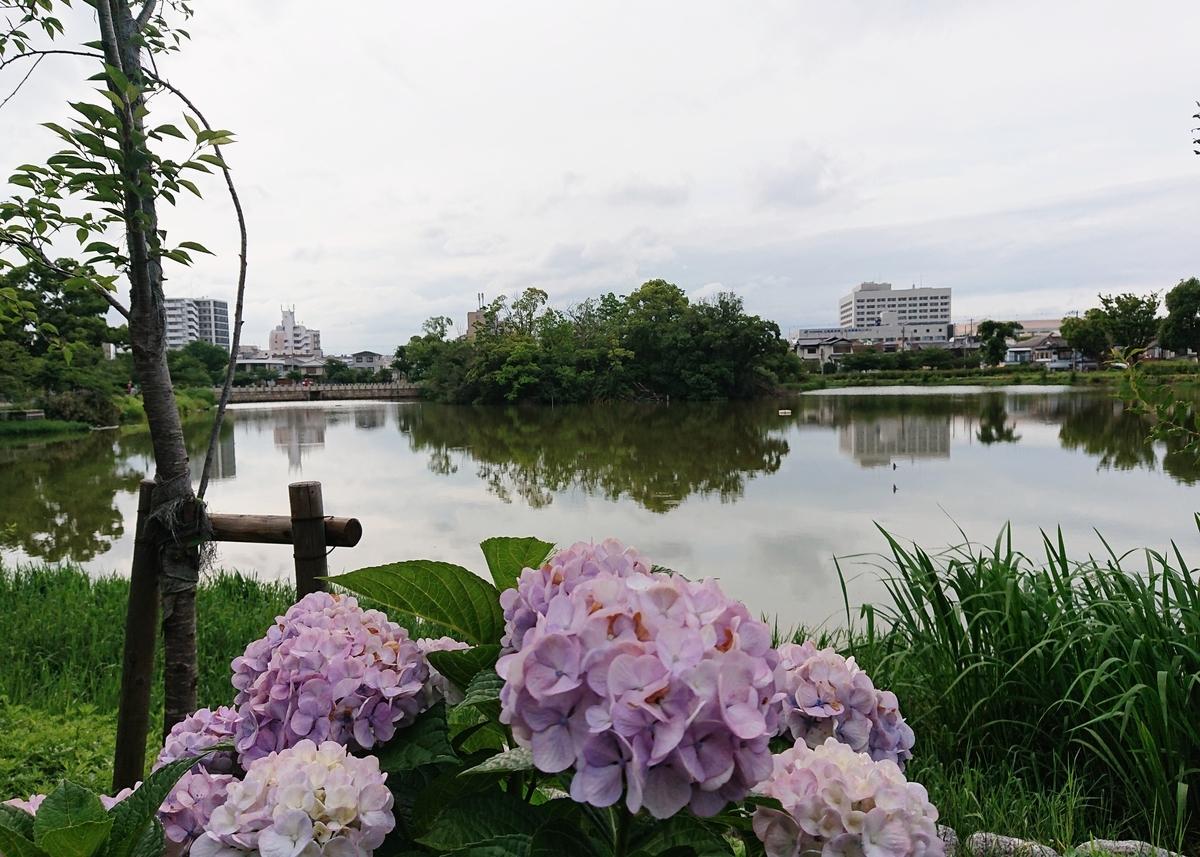 f:id:Kaimotu_Hatuji:20200706102033j:plain