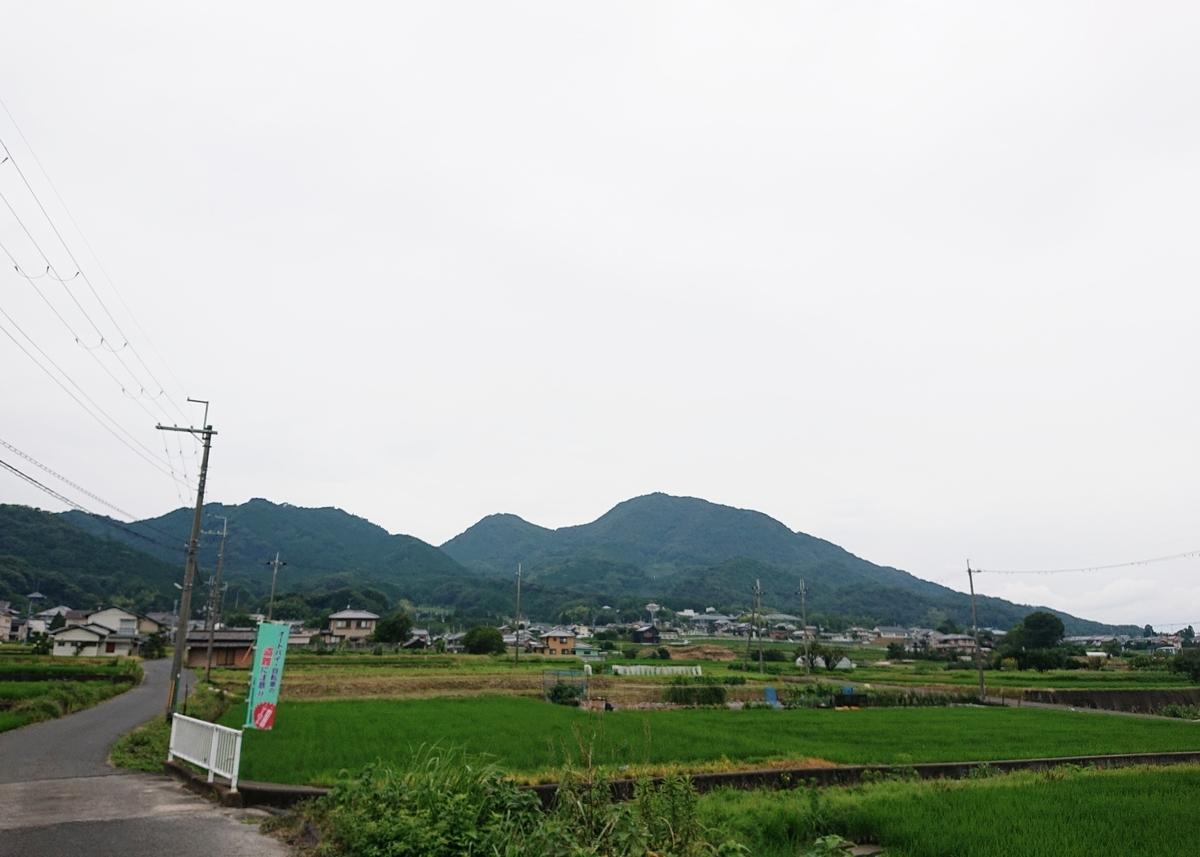 f:id:Kaimotu_Hatuji:20200724174959j:plain