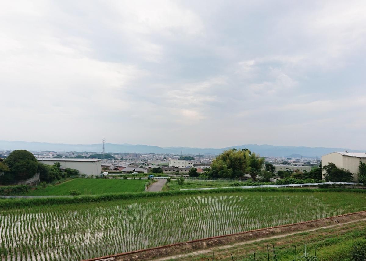 f:id:Kaimotu_Hatuji:20200724190620j:plain