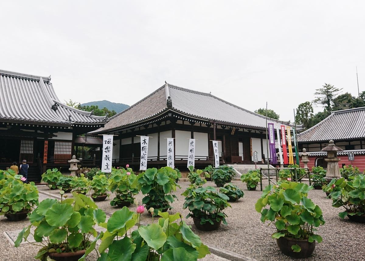 f:id:Kaimotu_Hatuji:20200726153712j:plain