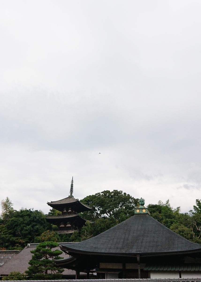 f:id:Kaimotu_Hatuji:20200727190225j:plain