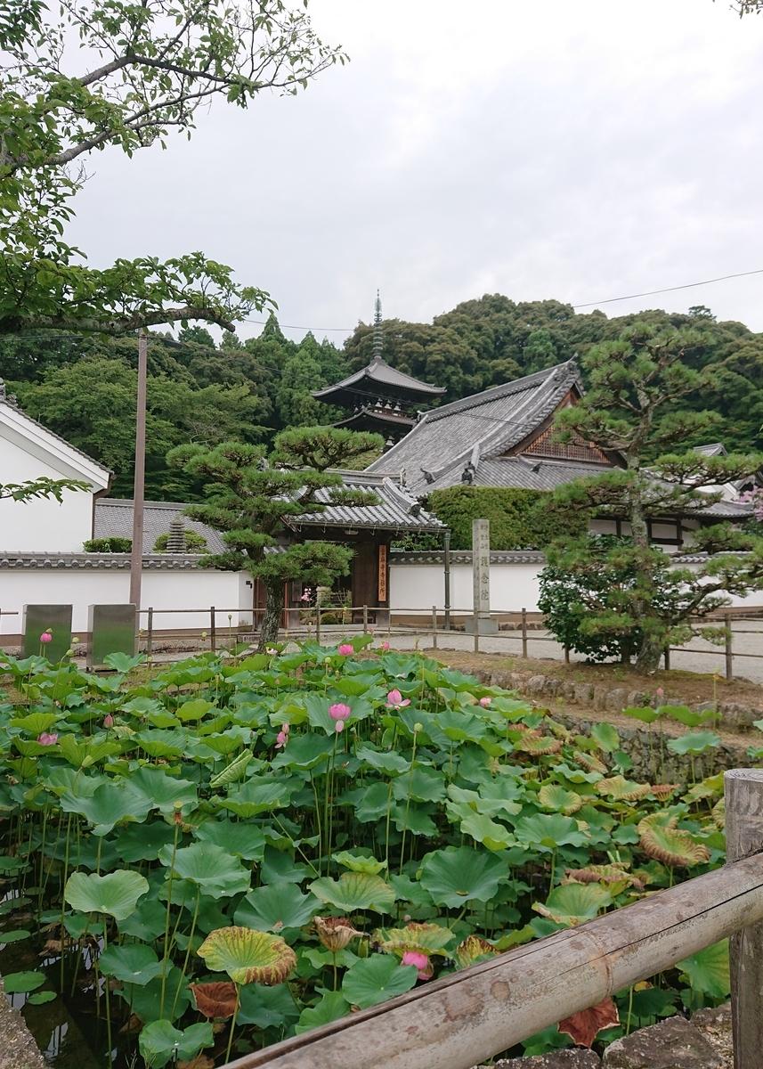 f:id:Kaimotu_Hatuji:20200727190502j:plain