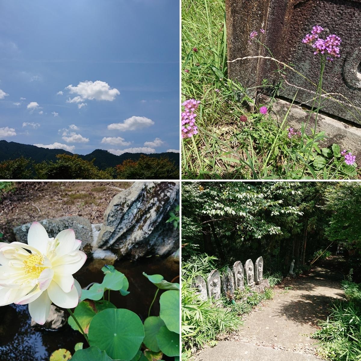 f:id:Kaimotu_Hatuji:20200801191919j:plain