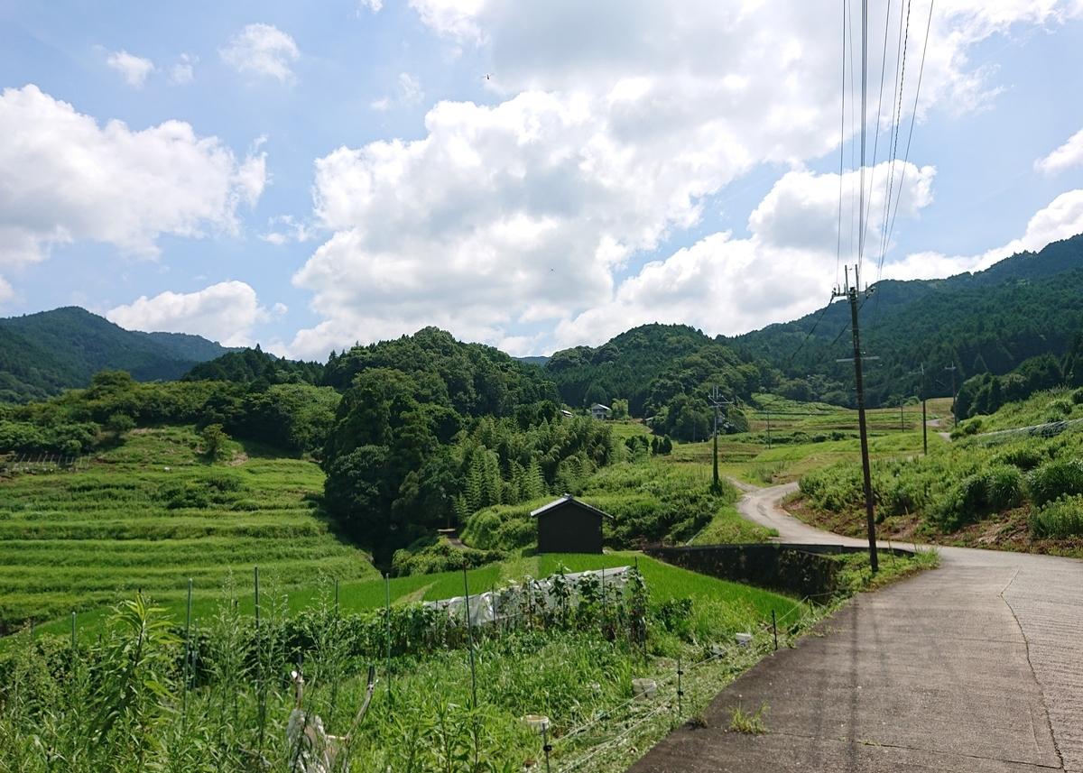 f:id:Kaimotu_Hatuji:20200802155915j:plain