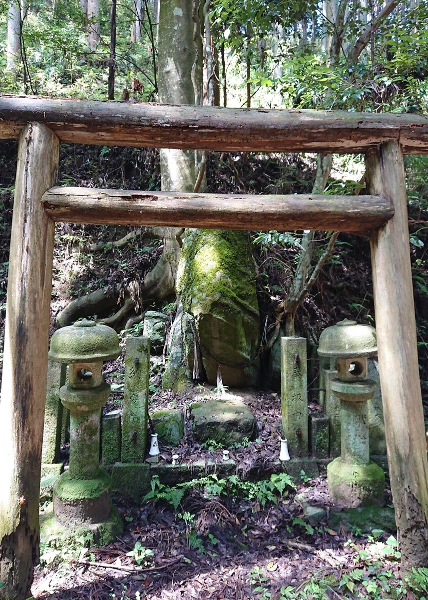 f:id:Kaimotu_Hatuji:20200804152057j:plain