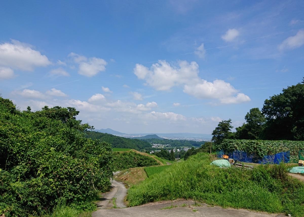 f:id:Kaimotu_Hatuji:20200804152251j:plain