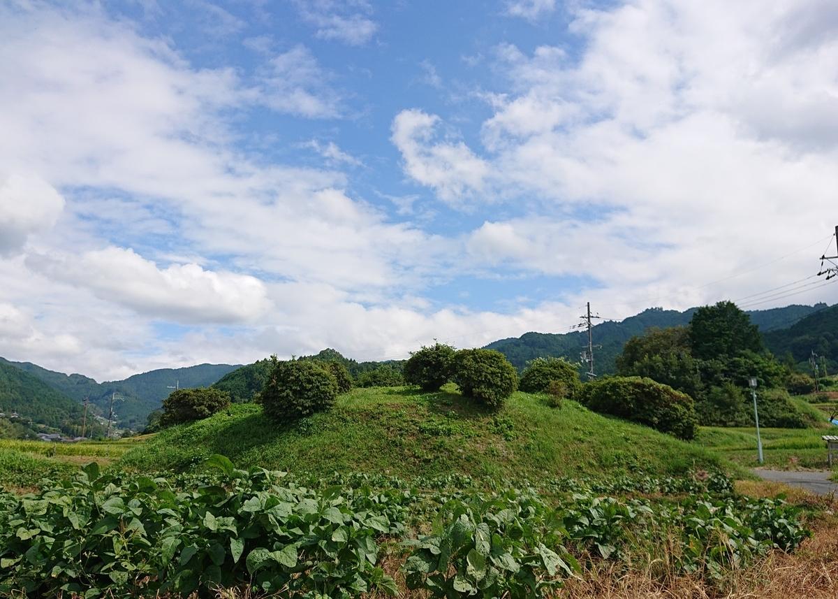 f:id:Kaimotu_Hatuji:20200807190420j:plain
