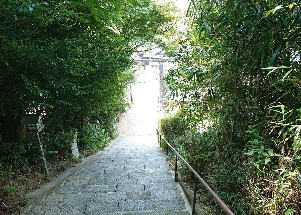 f:id:Kaimotu_Hatuji:20200809185025j:plain