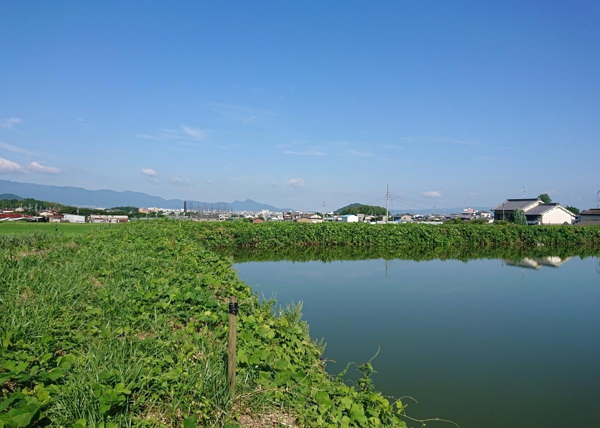 f:id:Kaimotu_Hatuji:20200814172657j:plain