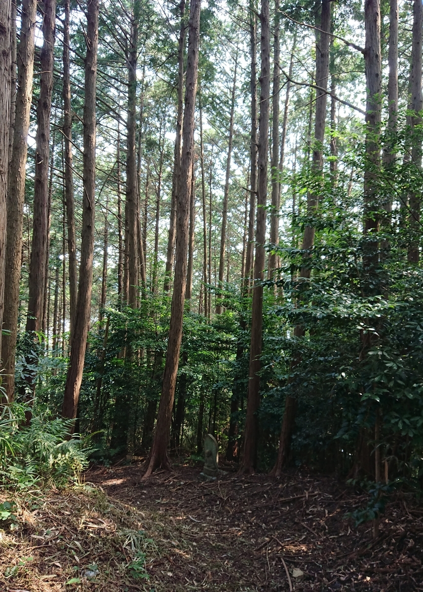 f:id:Kaimotu_Hatuji:20200821184200j:plain