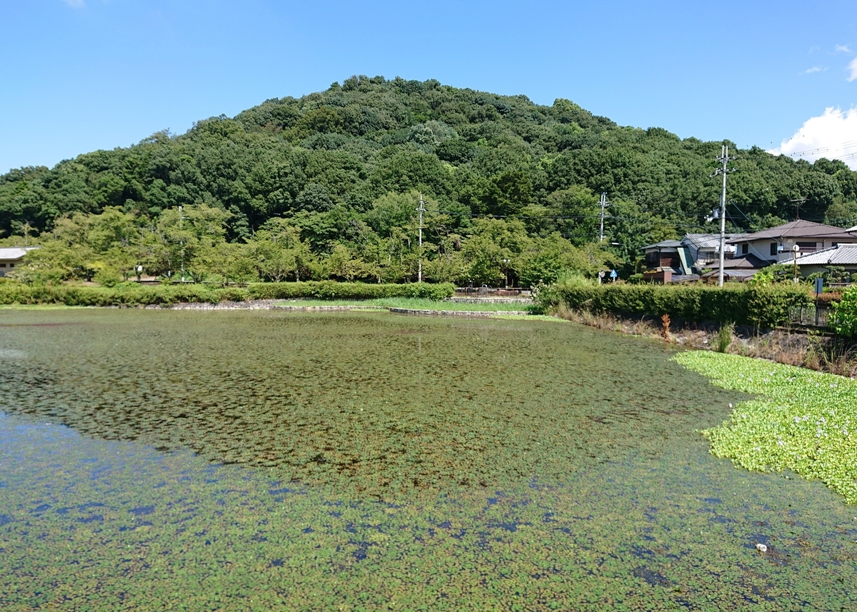 f:id:Kaimotu_Hatuji:20200829180412j:plain