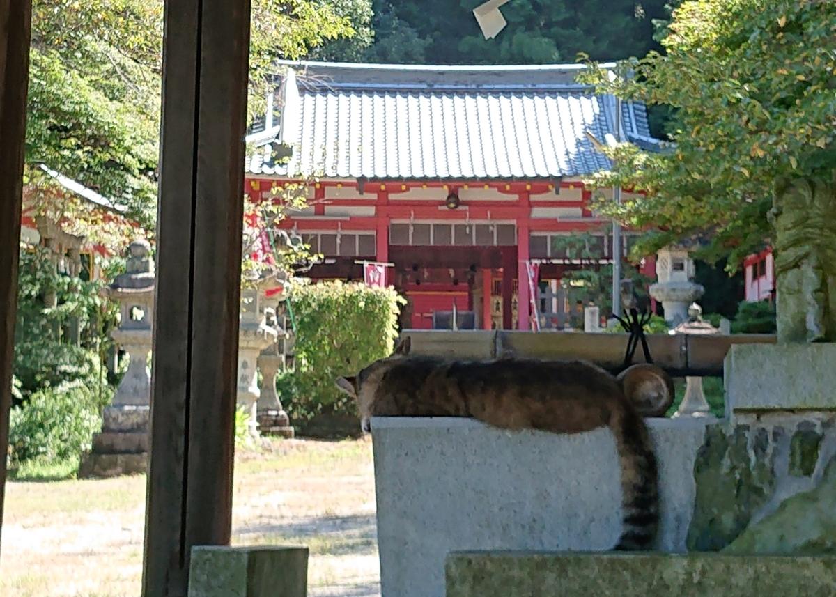 f:id:Kaimotu_Hatuji:20200829180634j:plain