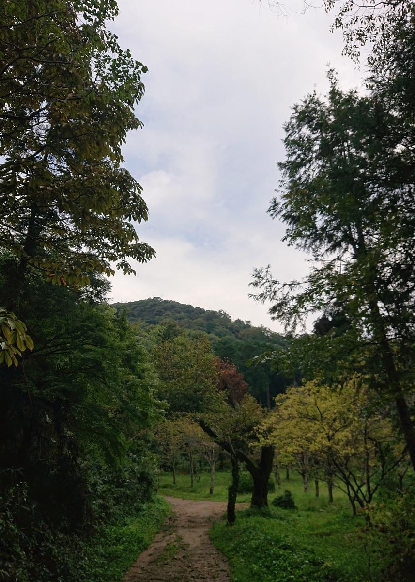 f:id:Kaimotu_Hatuji:20200920143317j:plain