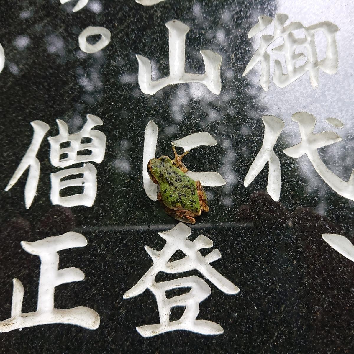 f:id:Kaimotu_Hatuji:20200926191442j:plain
