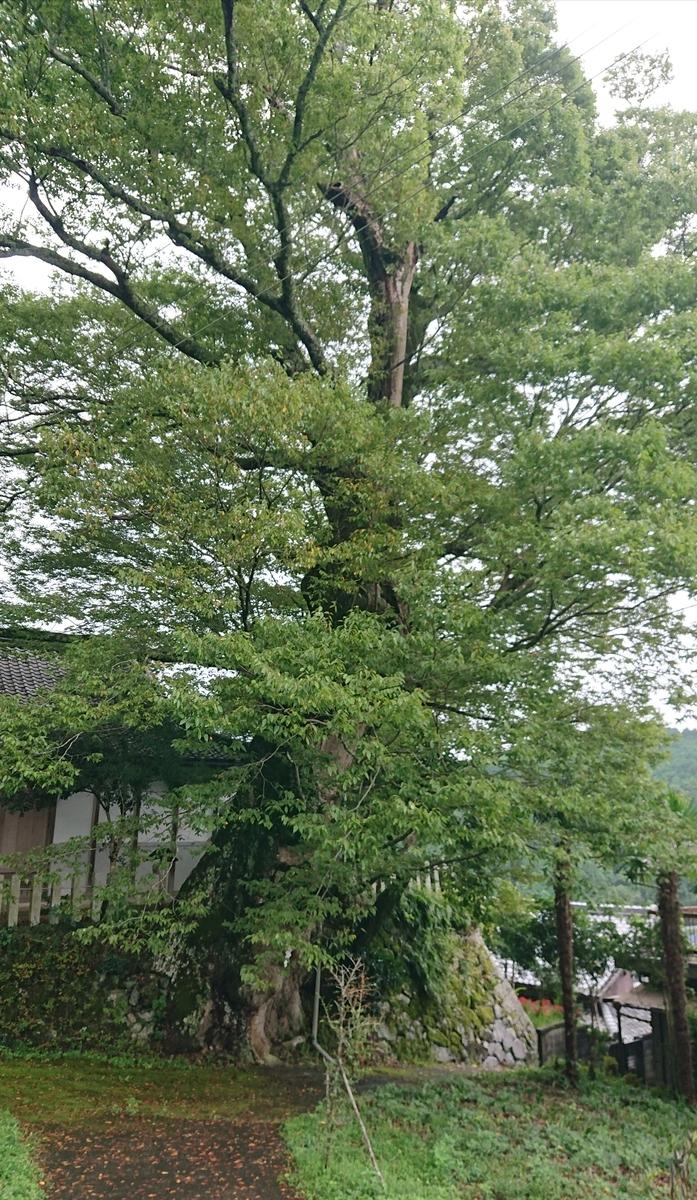f:id:Kaimotu_Hatuji:20201004160325j:plain