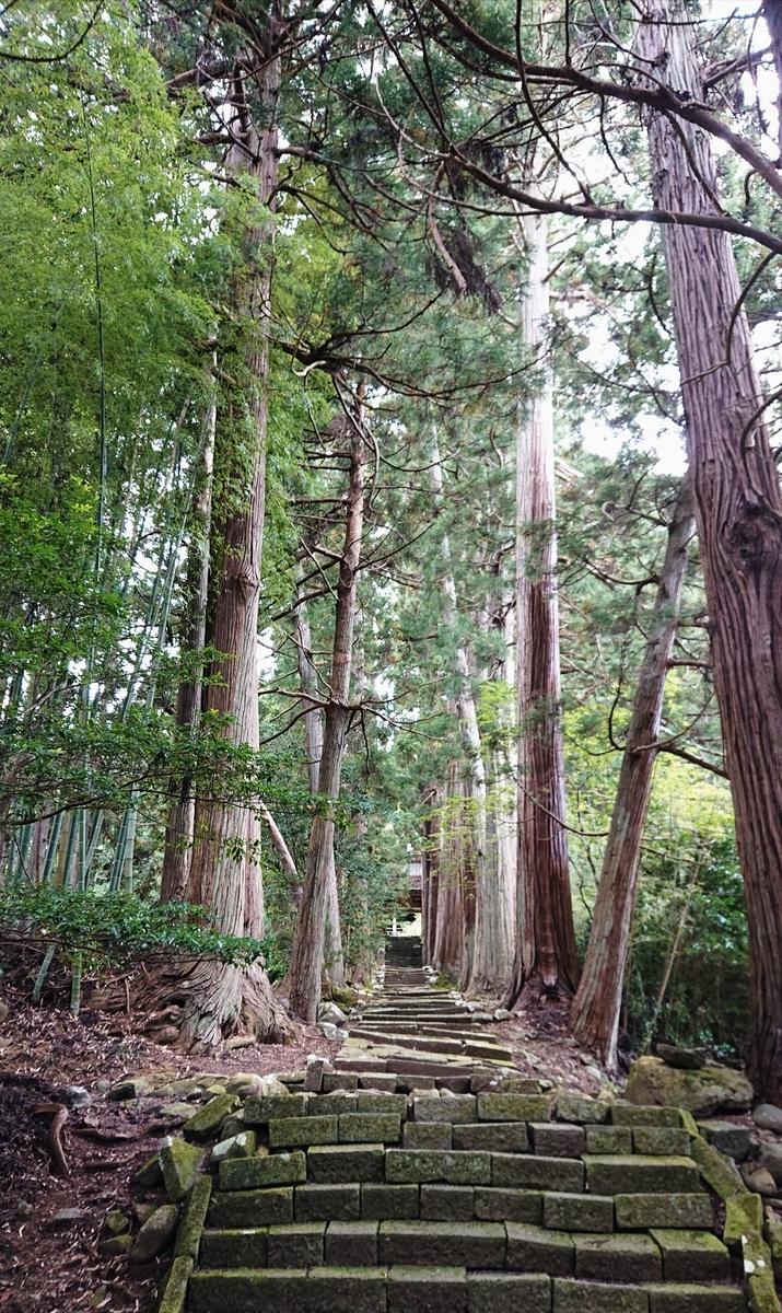 f:id:Kaimotu_Hatuji:20201018035911j:plain