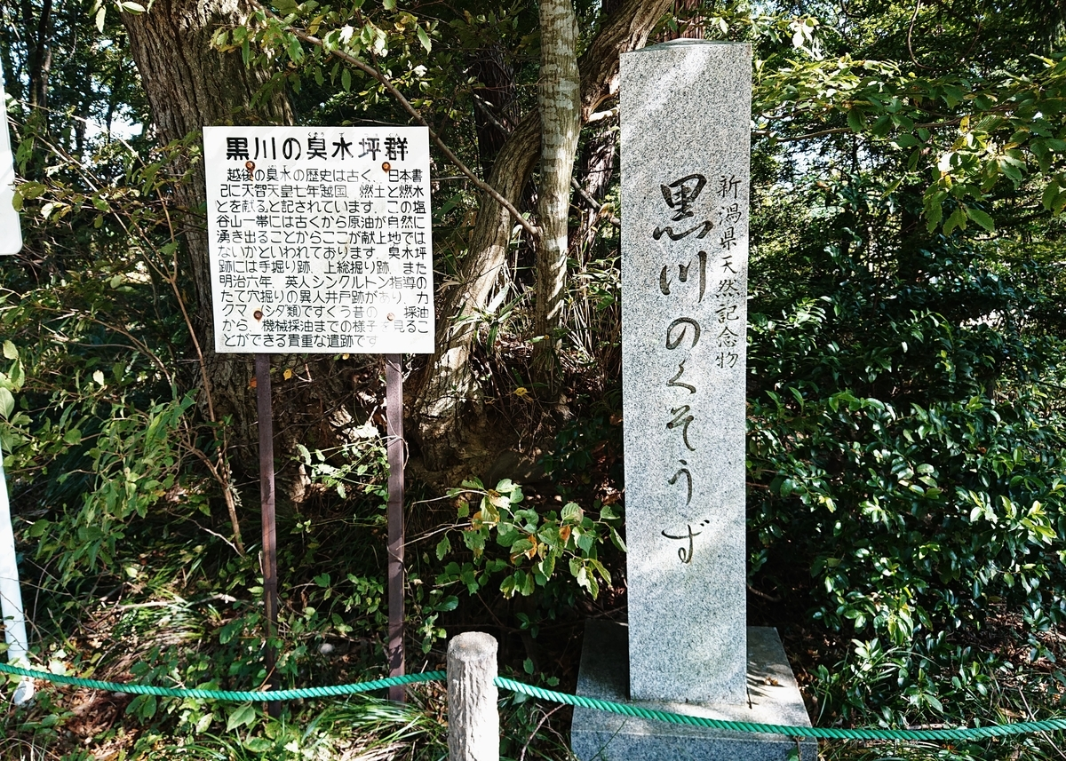 f:id:Kaimotu_Hatuji:20201021042627j:plain