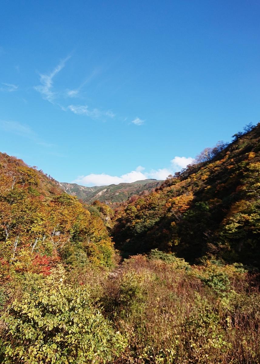 f:id:Kaimotu_Hatuji:20201023025408j:plain
