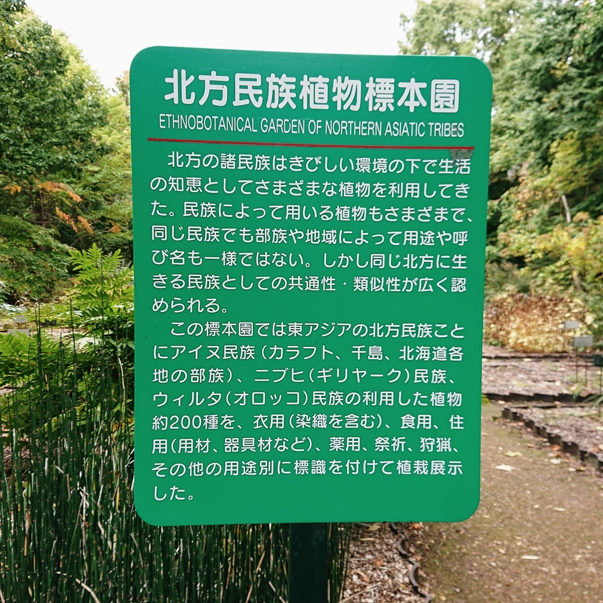 f:id:Kaimotu_Hatuji:20201029140651j:plain