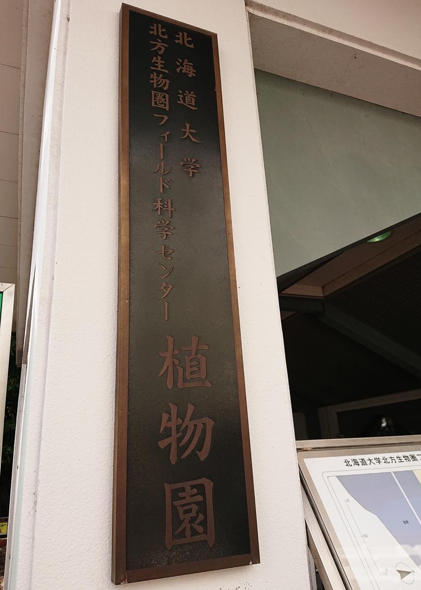 f:id:Kaimotu_Hatuji:20201029140946j:plain