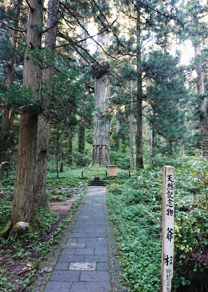 f:id:Kaimotu_Hatuji:20201031094337j:plain