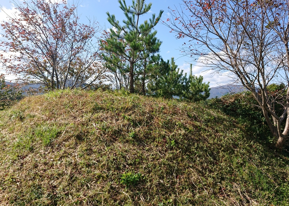 f:id:Kaimotu_Hatuji:20201106173216j:plain