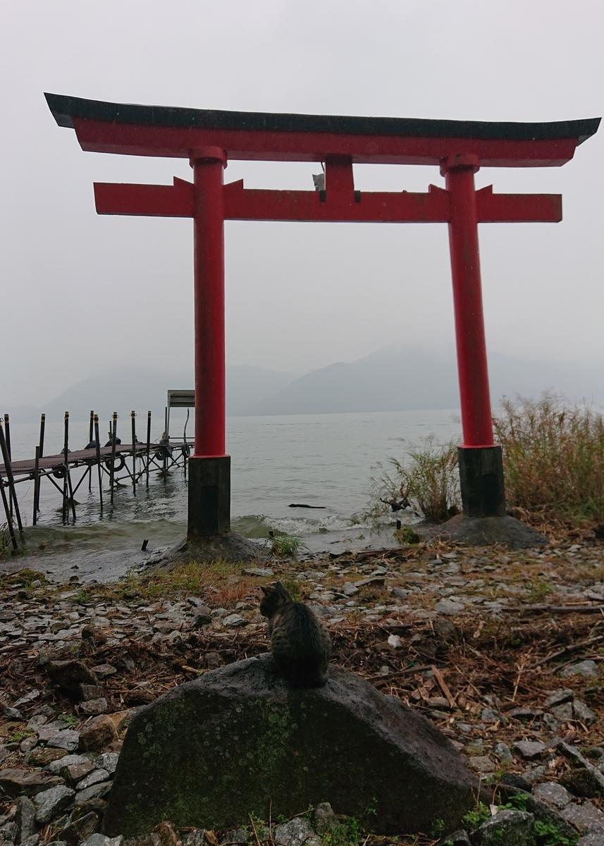 f:id:Kaimotu_Hatuji:20201108181224j:plain