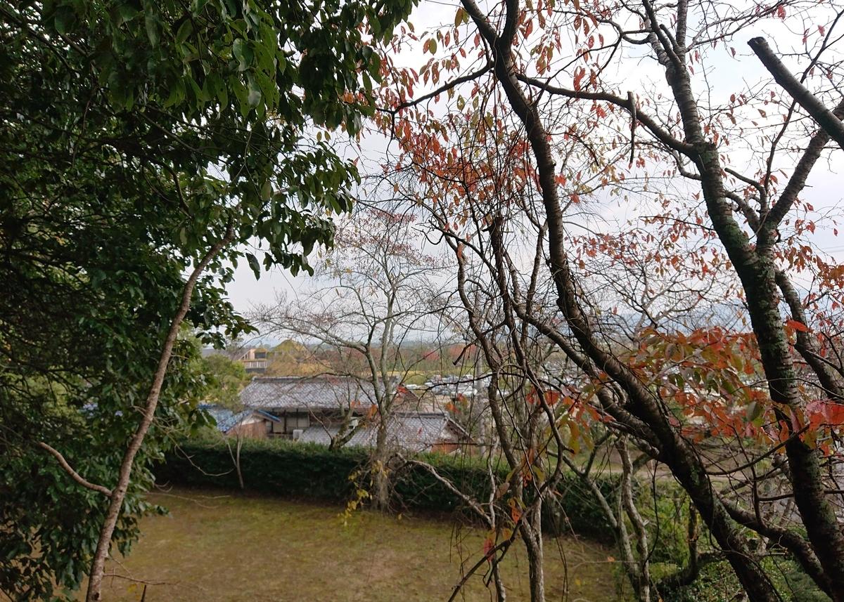 f:id:Kaimotu_Hatuji:20201110202158j:plain