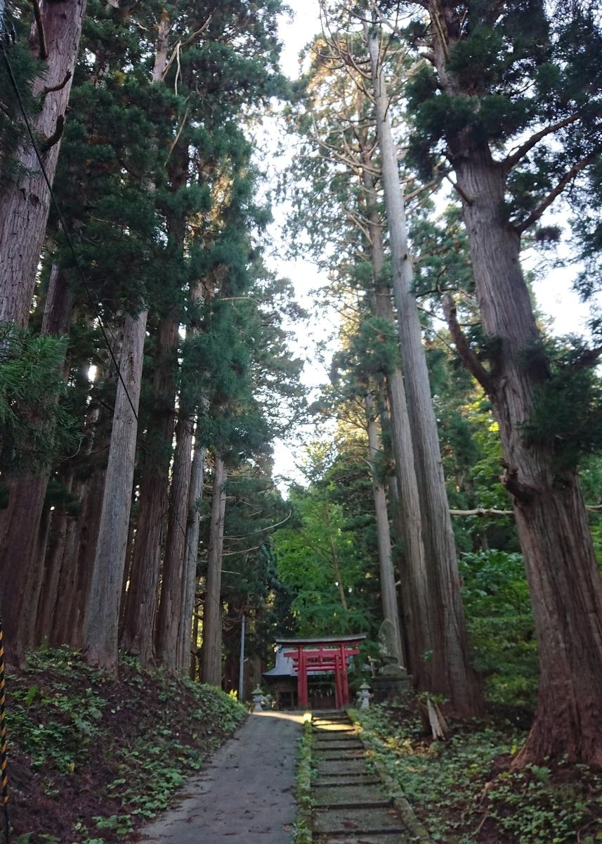 f:id:Kaimotu_Hatuji:20201116132118j:plain
