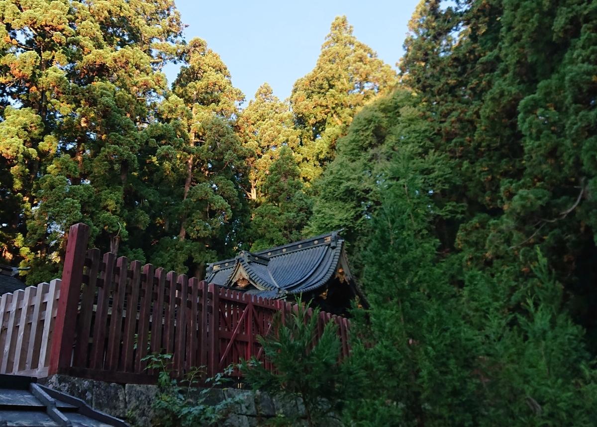 f:id:Kaimotu_Hatuji:20201119151023j:plain