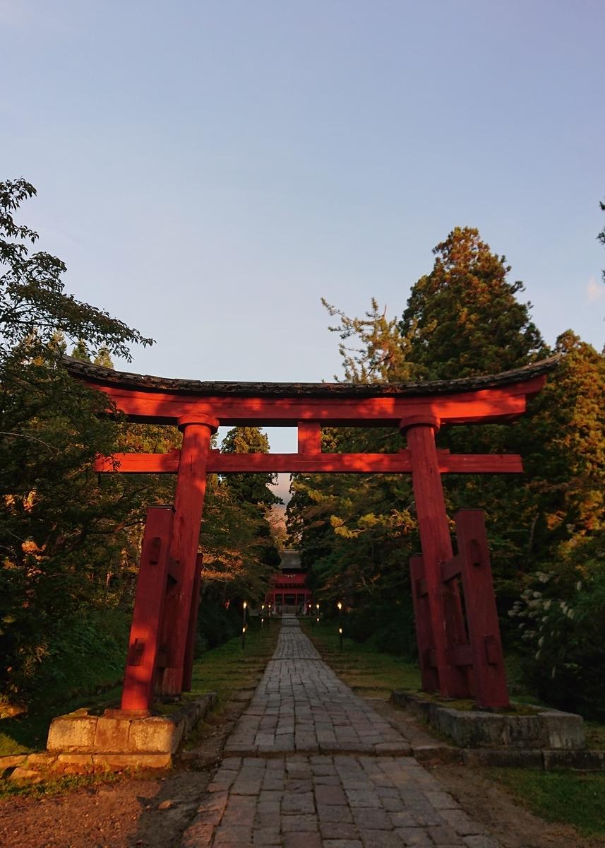 f:id:Kaimotu_Hatuji:20201119151805j:plain