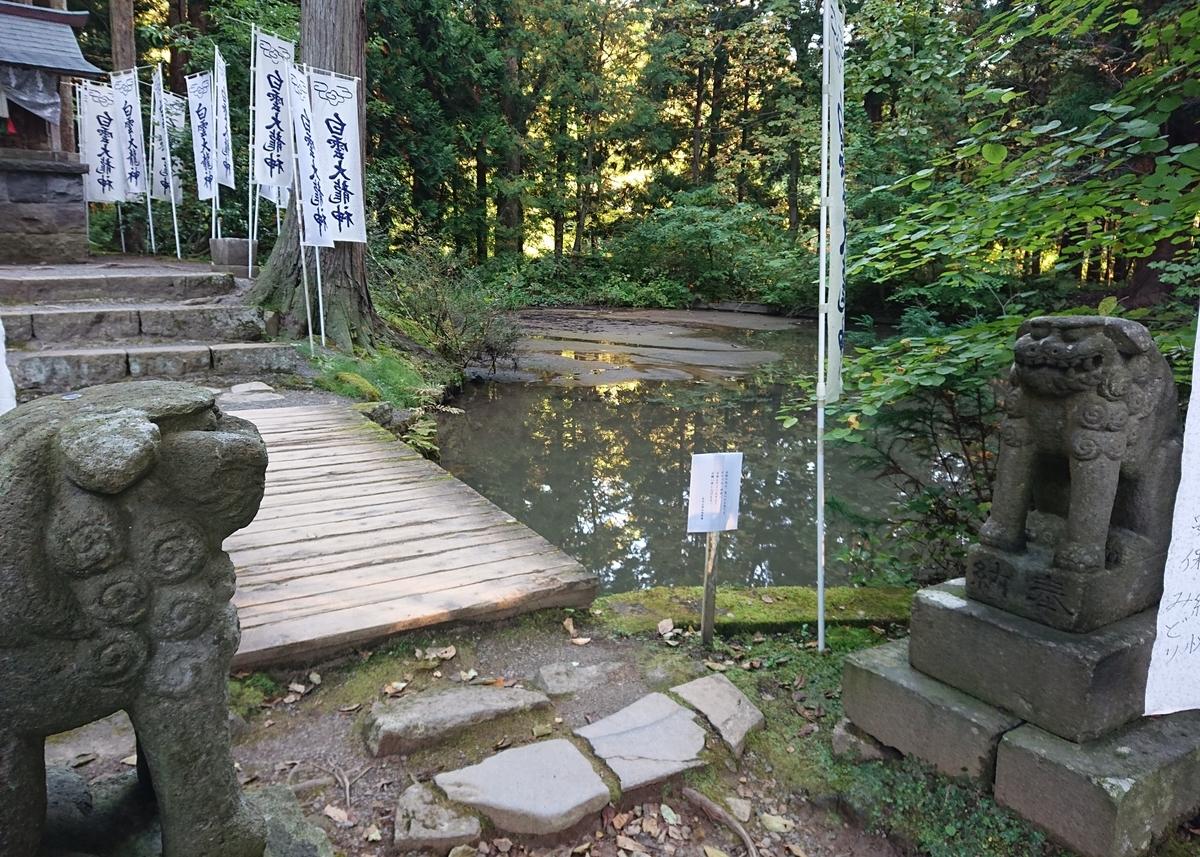 f:id:Kaimotu_Hatuji:20201121065819j:plain