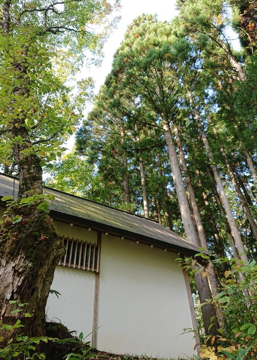 f:id:Kaimotu_Hatuji:20201125143418j:plain
