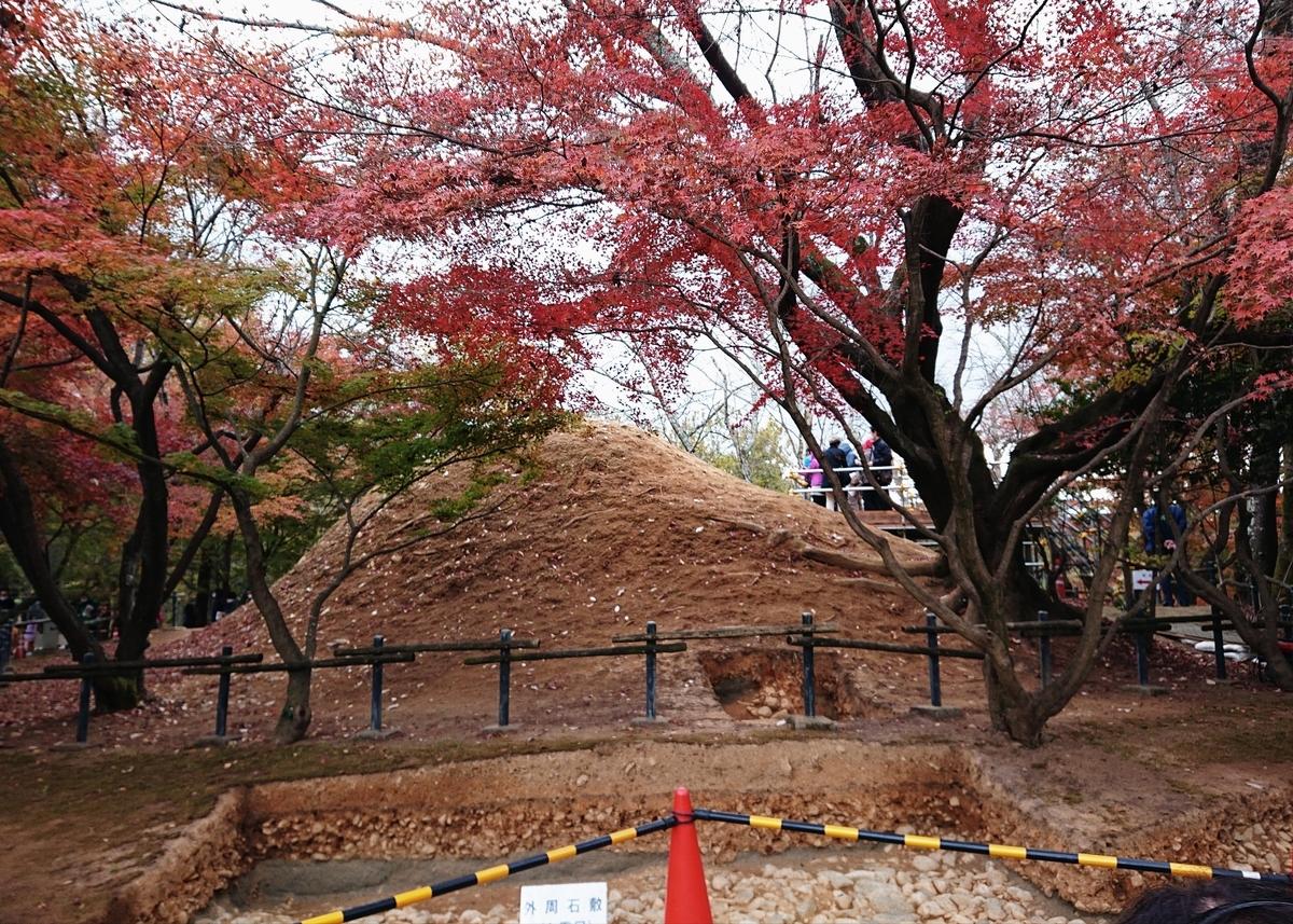 f:id:Kaimotu_Hatuji:20201201131635j:plain