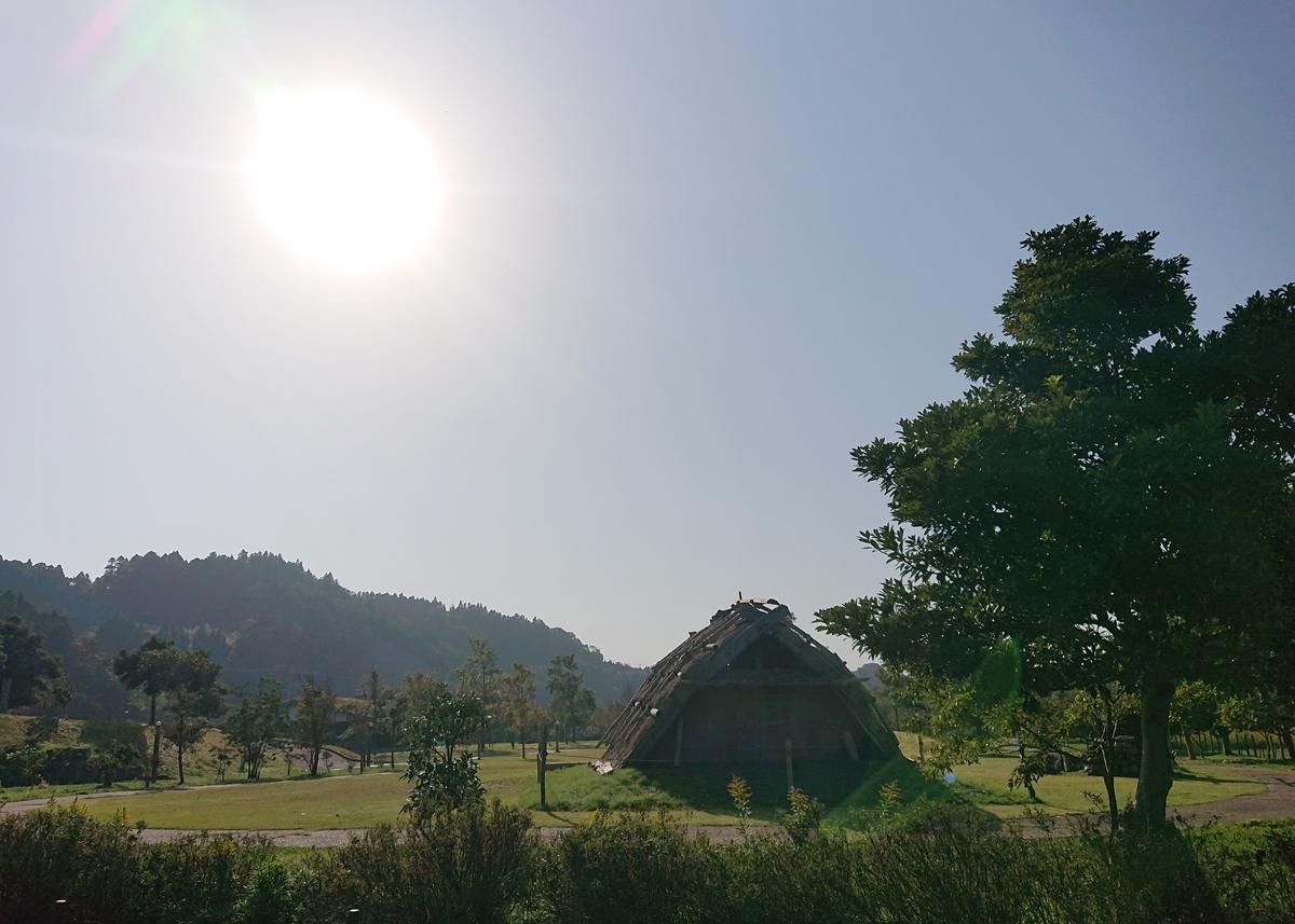 f:id:Kaimotu_Hatuji:20201206182614j:plain