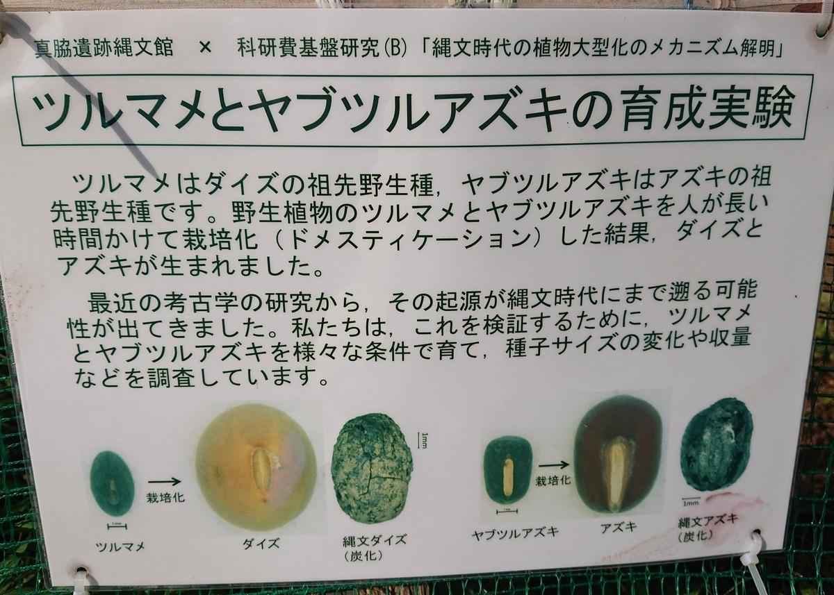 f:id:Kaimotu_Hatuji:20201210154119j:plain