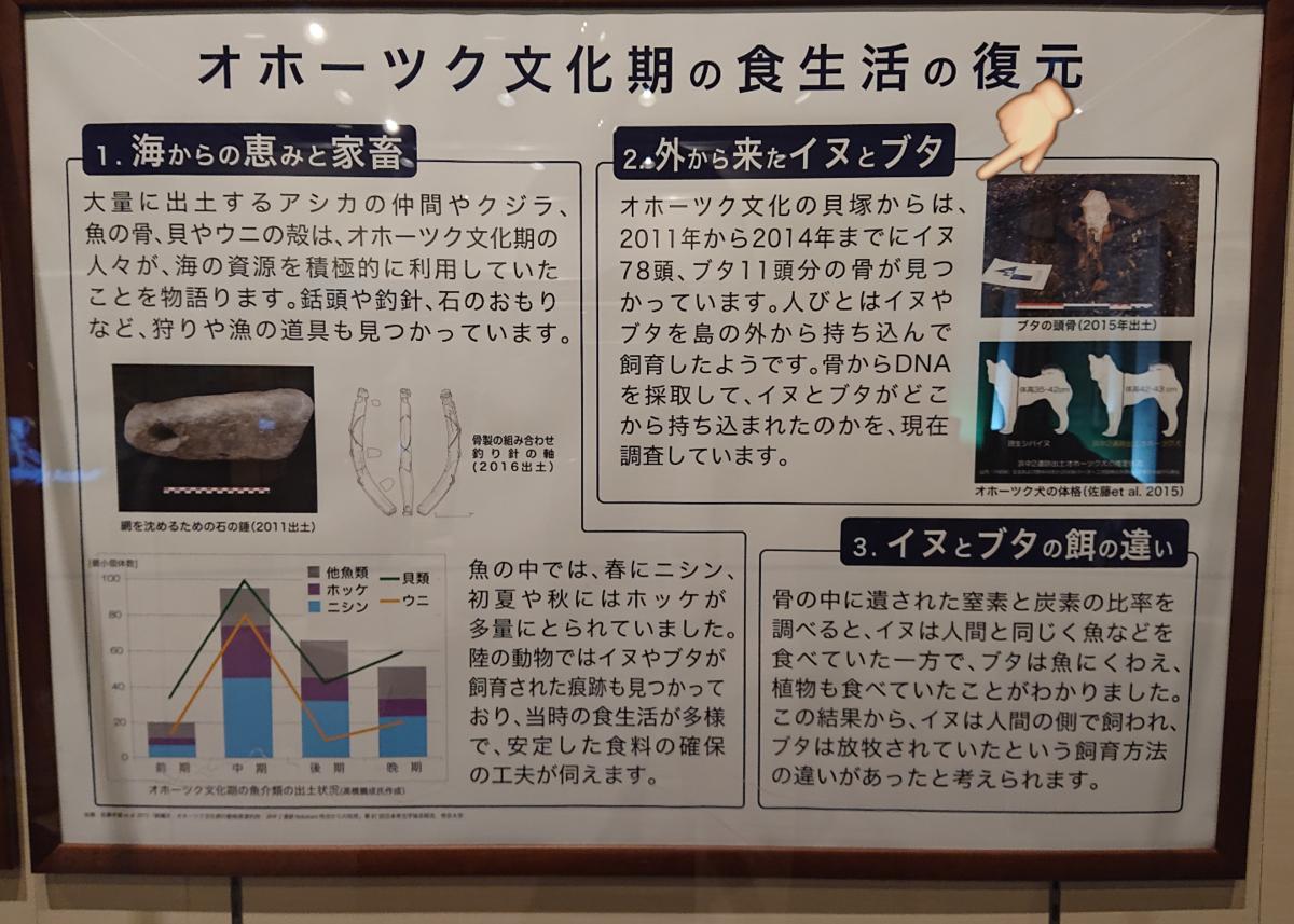 f:id:Kaimotu_Hatuji:20201215153840p:plain