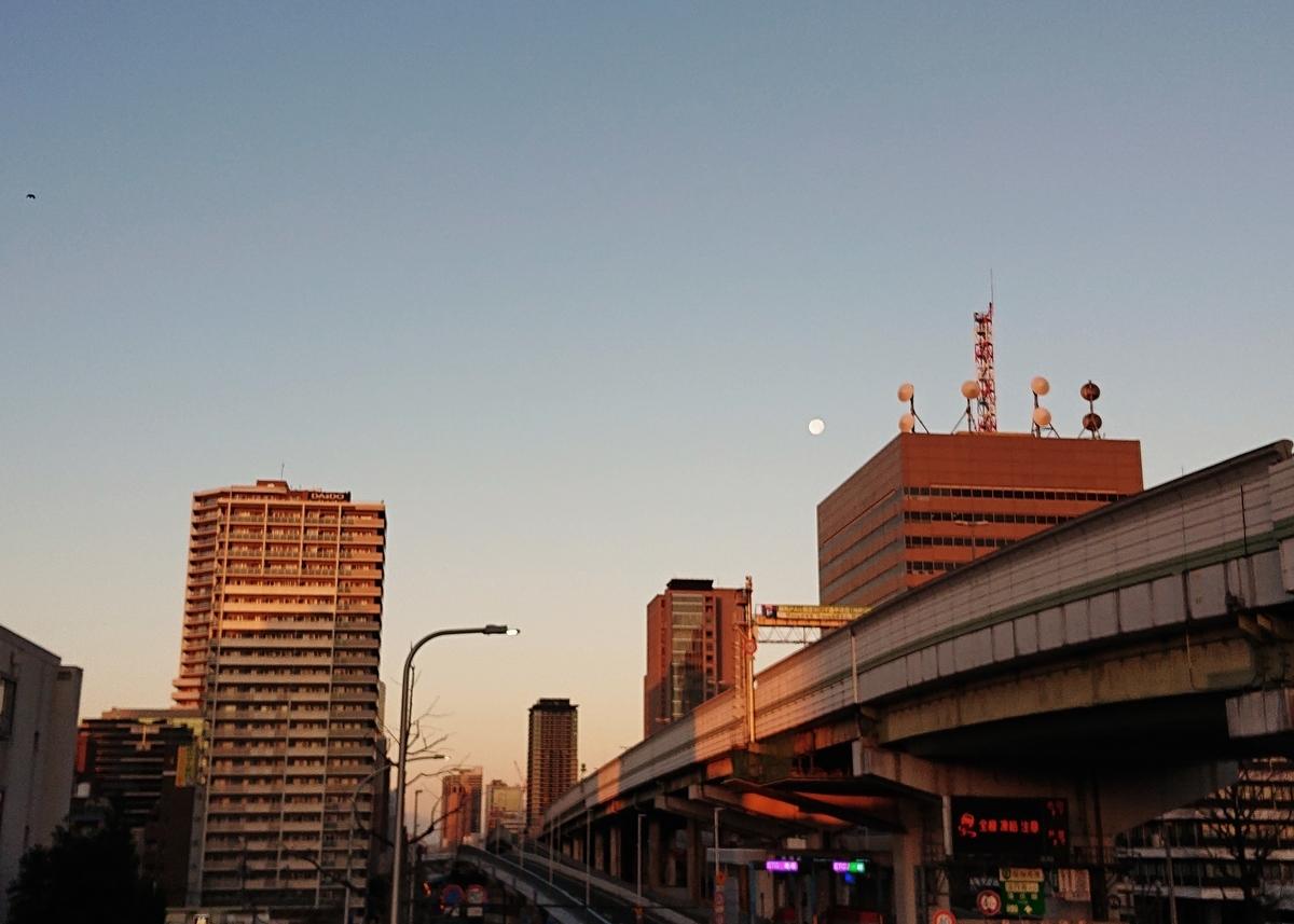 f:id:Kaimotu_Hatuji:20210101101057j:plain