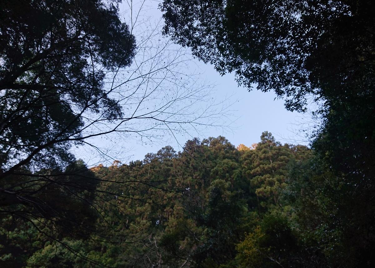 f:id:Kaimotu_Hatuji:20210215180453j:plain