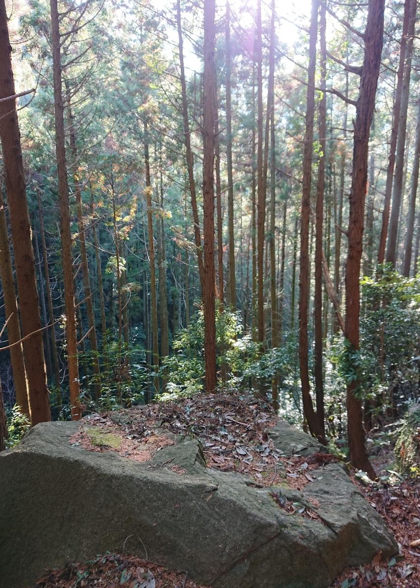 f:id:Kaimotu_Hatuji:20210219155000j:plain