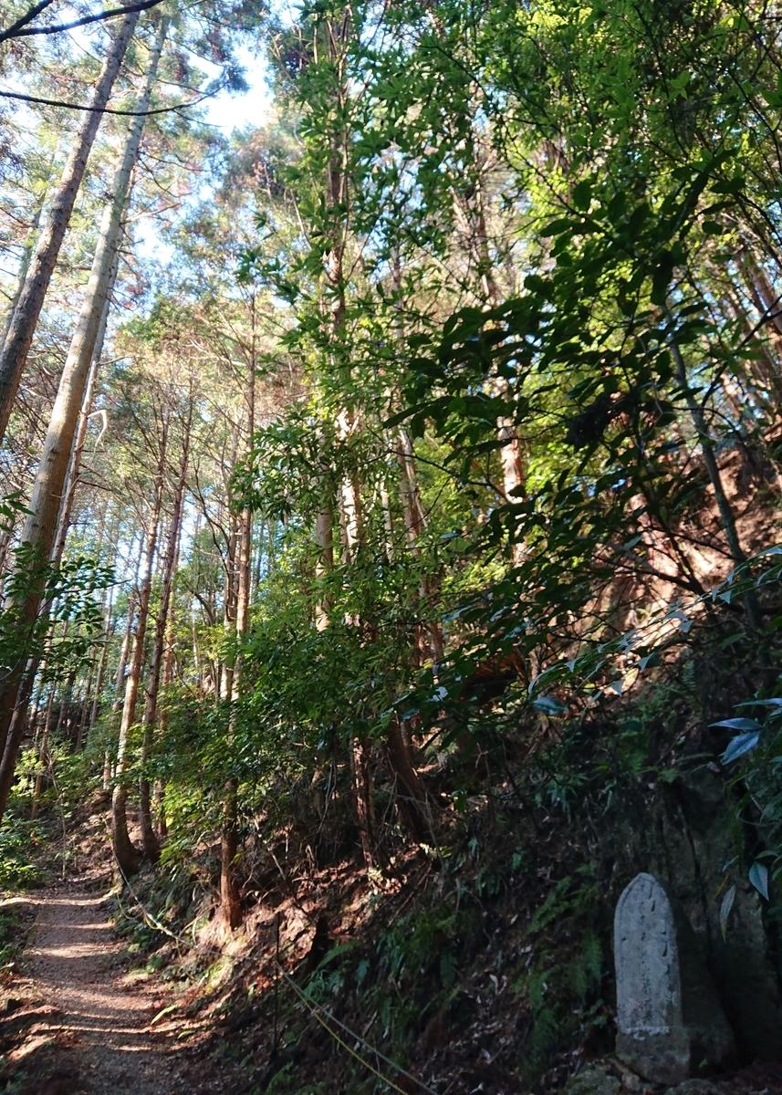 f:id:Kaimotu_Hatuji:20210219155020j:plain