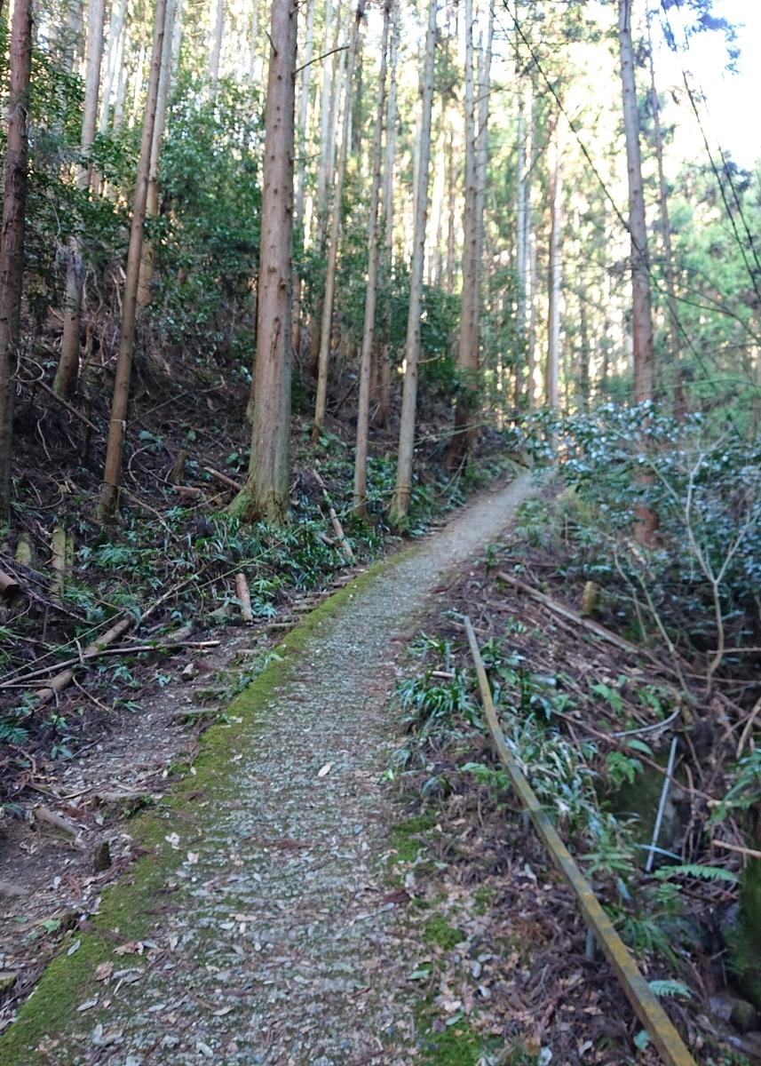 f:id:Kaimotu_Hatuji:20210219155252j:plain