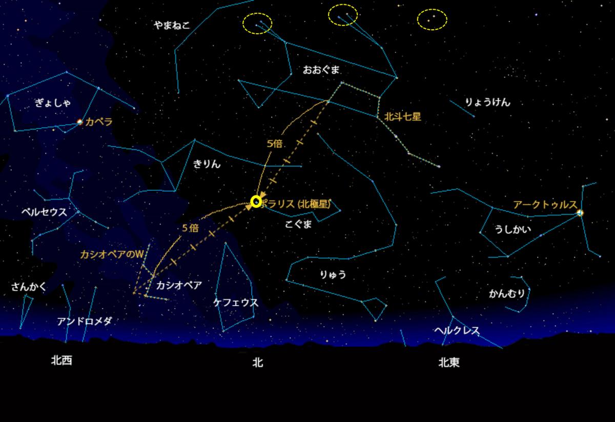 f:id:Kaimotu_Hatuji:20210226153934p:plain